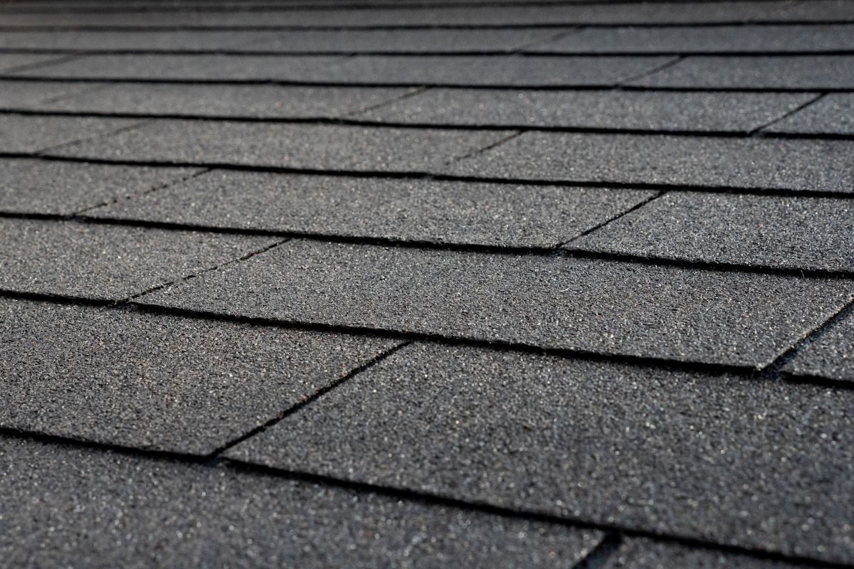 black shingles roof protection dunster house