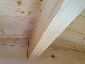 Log Cabin Avoid Sagging Roof