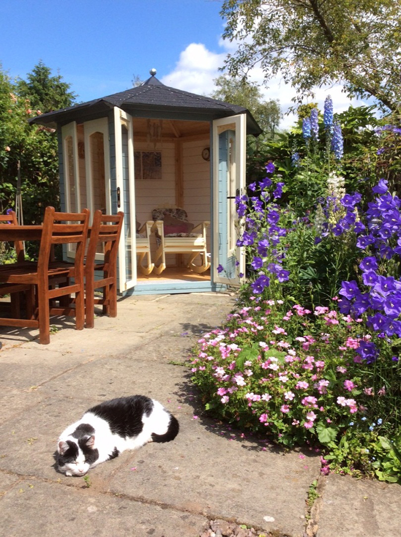 summerhouse and cat