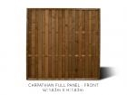 Carpathian Full Fence Panel