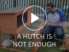 Rabbitopia Hutch is not enough