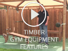 Timber Gym Equipment Features
